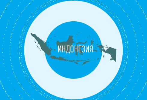 Рынок мобильных игр Индонезии